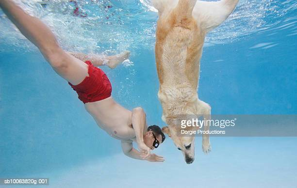 Mature man swimming with dog in pool