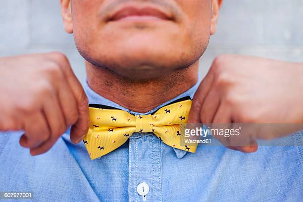 Mature man tying bow tie, close up
