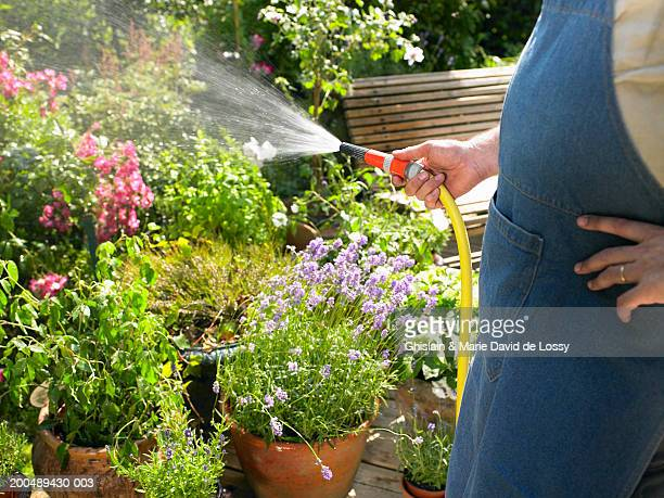 Mature man watering garden with hose