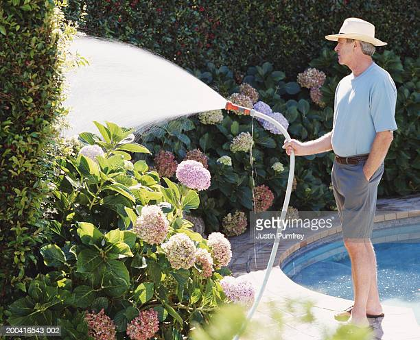 Mature man watering plants with garden hose, hand in pocket, side view