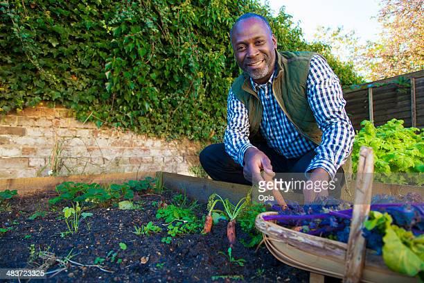 Mature man with organic carrots