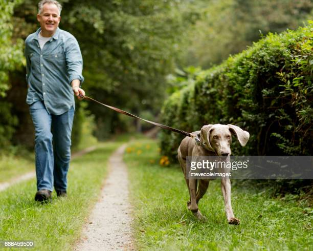 mature man with pet dog at park. - walker stock photos and pictures