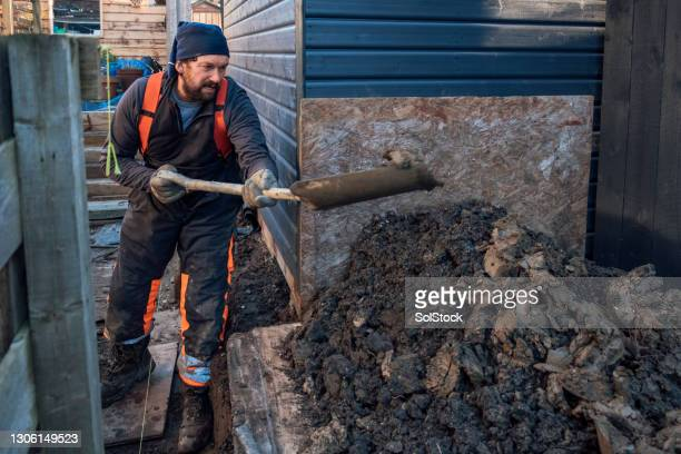 mature man working in his garden - one mature man only stock pictures, royalty-free photos & images