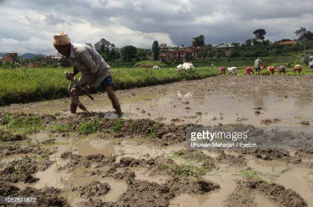 Mature Man Working On Muddy Field Against Cloudy Sky In Farm