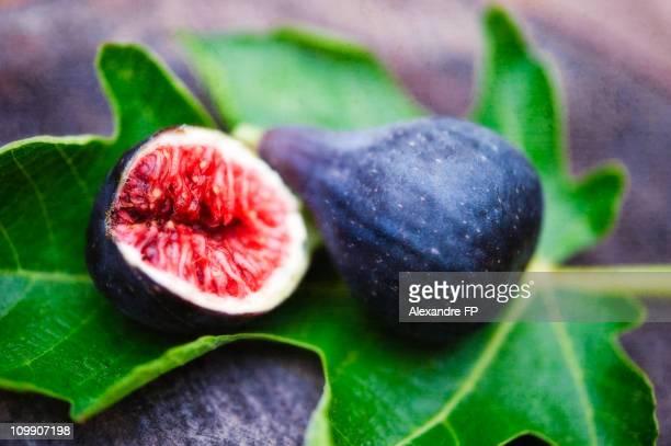 Mature purple figs on a fig leaf