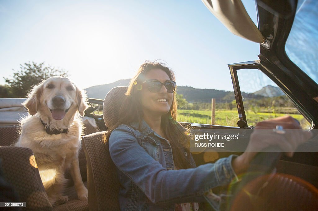 Mature woman and dog, in convertible car : Foto stock