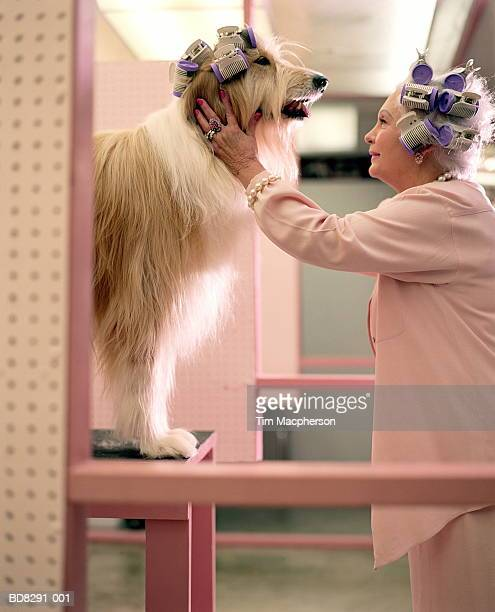 Mature woman and dog in poodle parlour