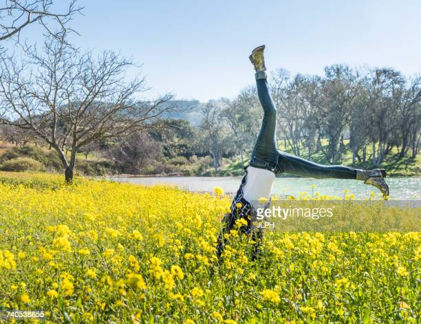 mature woman doing cartwheel in field of wild flowers, paso robles, california, usa - cartwheel stock pictures, royalty-free photos & images