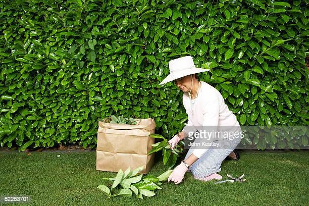 Reife Frau beim yardwork