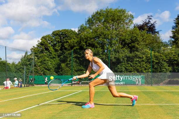 mature woman during a tennis match on grass court - practising stock pictures, royalty-free photos & images
