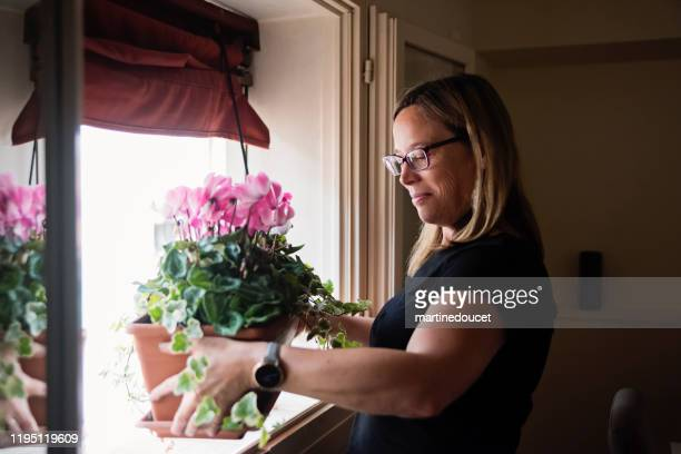 "mature woman gardening in her appartement. - ""martine doucet"" or martinedoucet imagens e fotografias de stock"