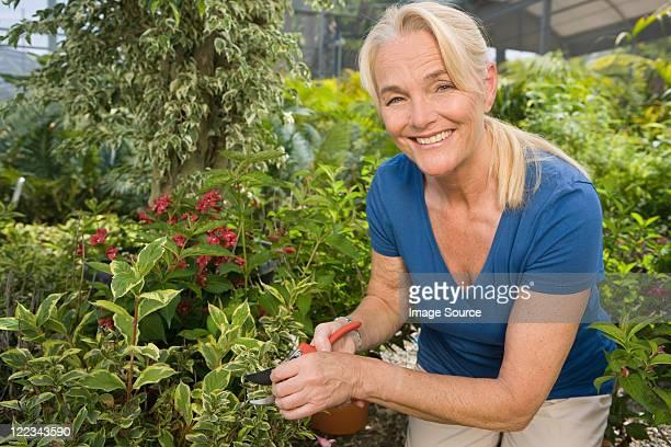 Ältere Frau Gartenbau