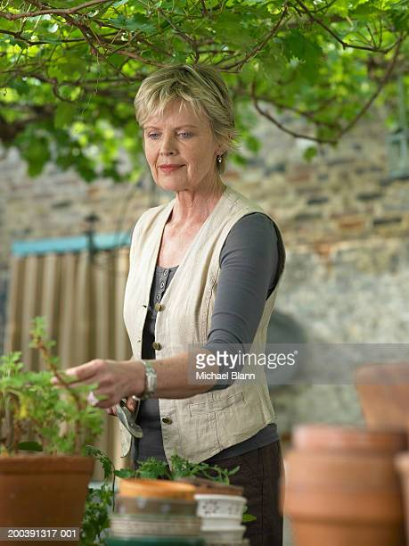 Mature woman in garden looking at pot plant, smiling