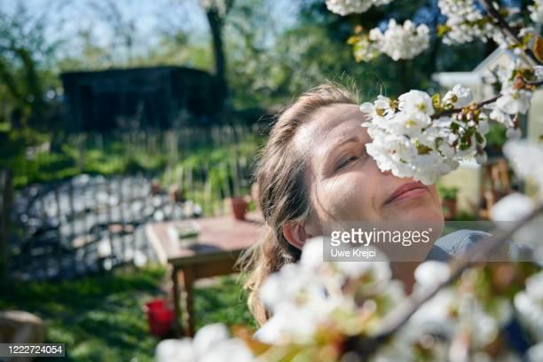 mature woman in her garden - schöne natur stock-fotos und bilder