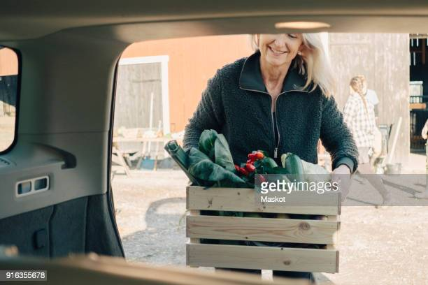 Mature woman loading crate full of organic vegetables in car trunk
