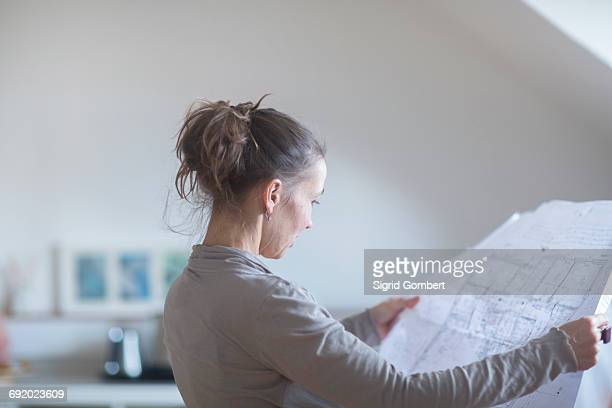 mature woman looking at blueprints - sigrid gombert foto e immagini stock