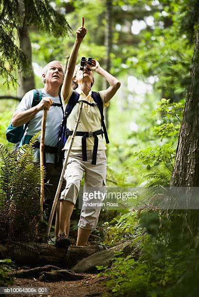Mature woman looking through binoculars while hiking through forest
