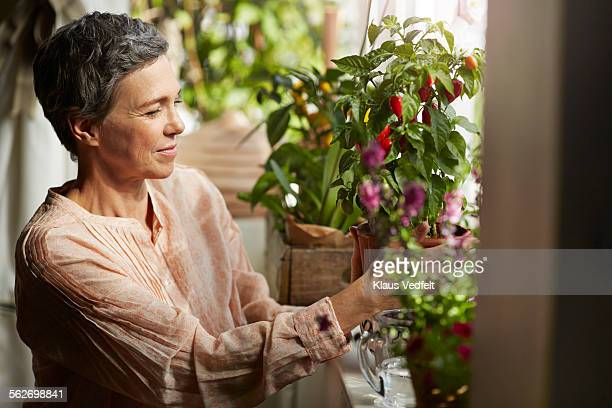 Mature woman nurturing plants in living room