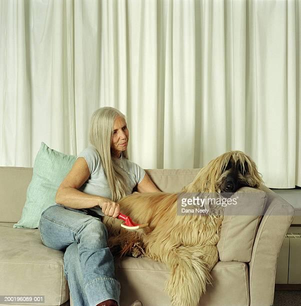 Mature woman on sofa grooming afghan hound