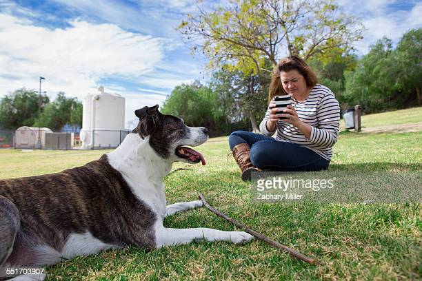 Mature woman photographing her dog in park using smartphone