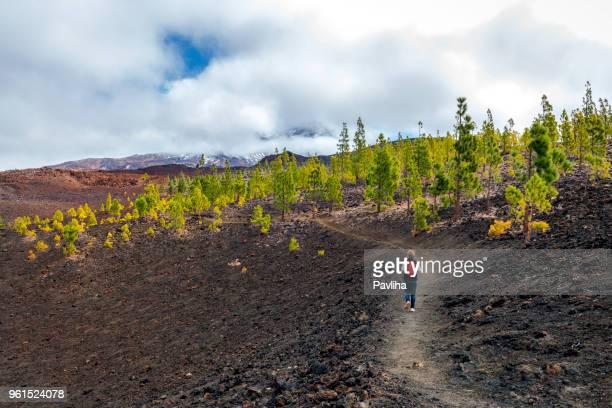 oudere vrouw foto's een weg onder de vulkaan el tido, tenerife, spanje - tenerife stockfoto's en -beelden