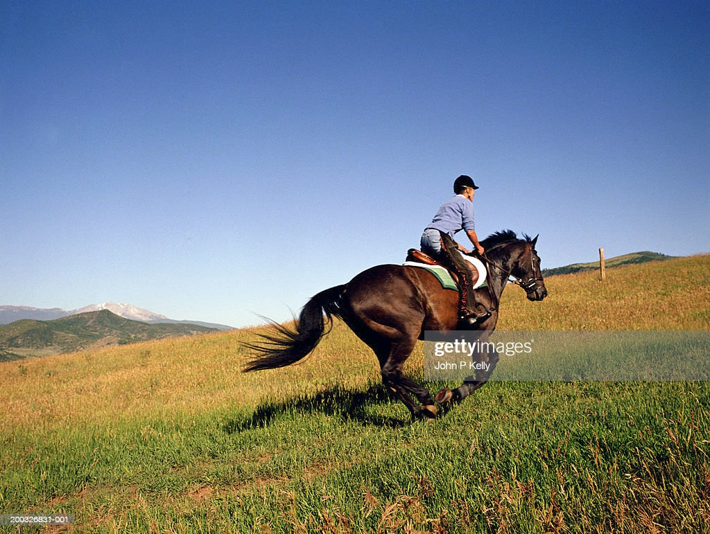 mature woman riding horse side view stock photo | getty images