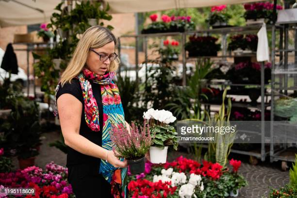 """mature woman shopping in street flower market outdoors. - """"martine doucet"""" or martinedoucet stock pictures, royalty-free photos & images"""