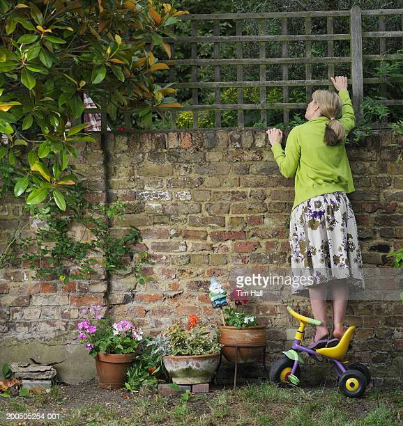 Mature woman standing on tricycle, looking over fence, rear view