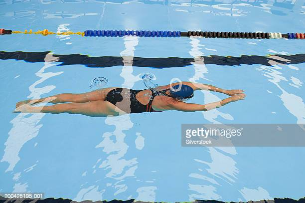 mature woman swimming underwater in laned pool, rear view - length stock pictures, royalty-free photos & images