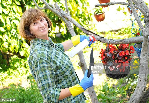 Mature woman taking care of garden and flowers in summertime