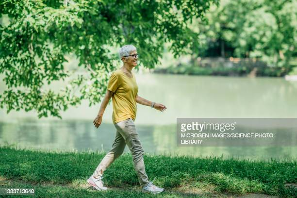 mature woman walking by a lake - mature women stock pictures, royalty-free photos & images