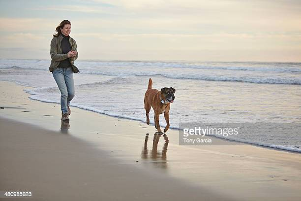 mature woman walking dog on breezy beach - americas next top dog stock pictures, royalty-free photos & images