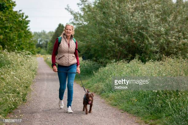 mature woman walking her patterdale terrier - nature reserve stock pictures, royalty-free photos & images