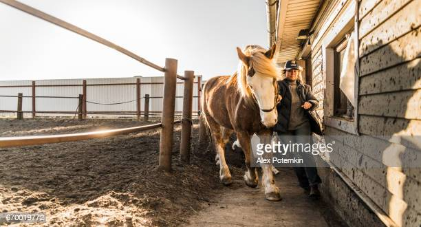 Mature woman walking the horse
