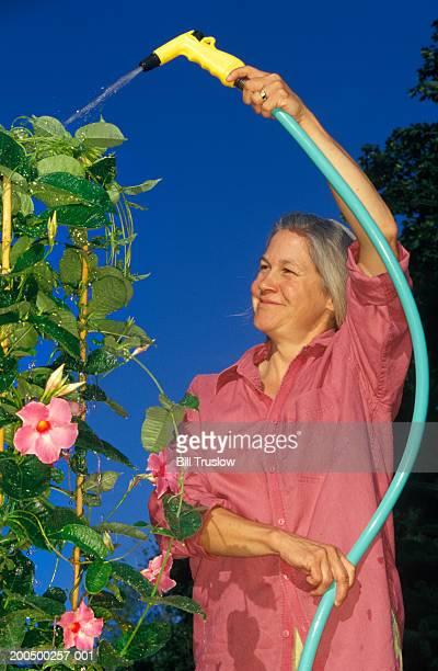 Mature woman watering plants in backyard, summer