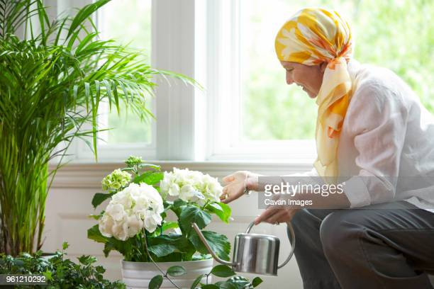 mature woman watering potted plants against window - pañuelo de cabeza fotografías e imágenes de stock