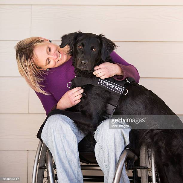 A mature woman wheelchair user with her arms around her service dog, a black labrador whose front paws are on her lap.