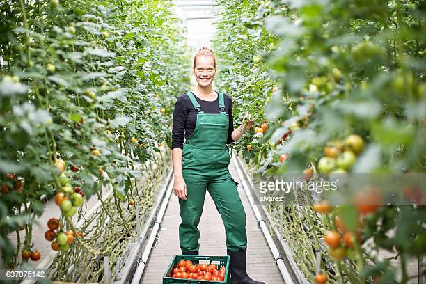 Mature woman working in greenhouse