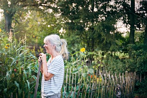 Mature woman working in her vegetable garden - gettyimageskorea