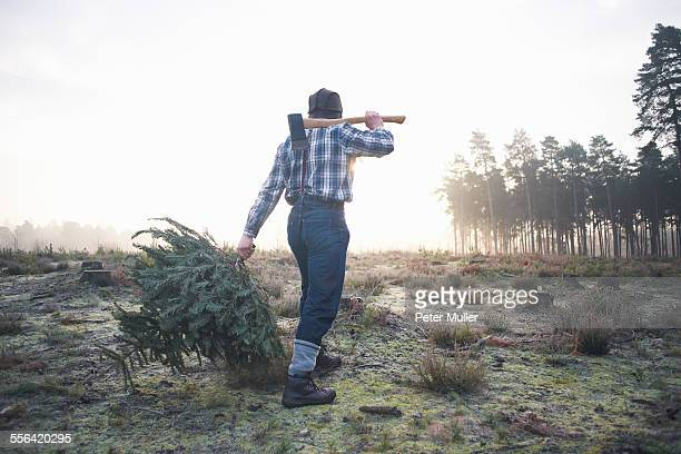 Mature woodsman walking in forest clearing with axe over his shoulder
