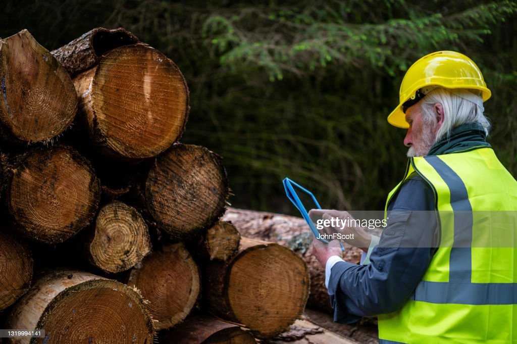 Mature working man using a digital tablet : Stock Photo