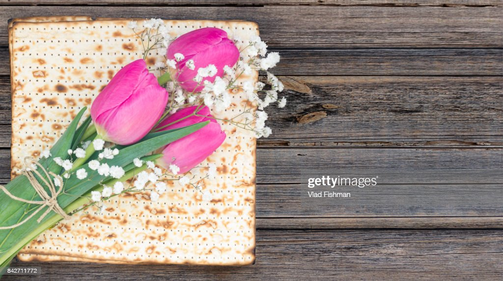 Matzah or matza on a white and tulip flowers on a vintage wood background with copy space. : Stock Photo