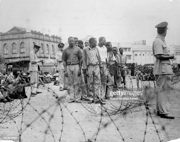 Mau Mau suspect are rounded up by police outside the camp in Manyani Kenya 1955