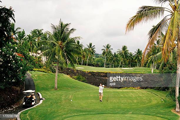 maui hawaii golfer and palm tree lined golf course - lahaina stock pictures, royalty-free photos & images
