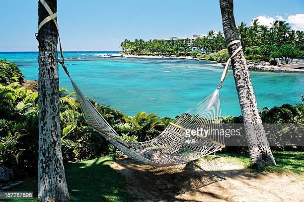 maui hawaii hammock on tropical turquoise resort hotel bay - kona coast stock photos and pictures