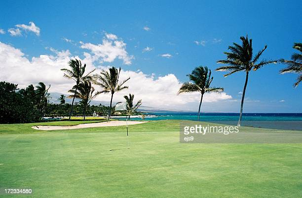 Maui Hawaii Pacific ocean front golf hole