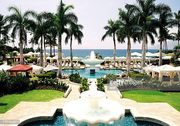 マウイ、ハワイパームトリー太平洋リゾートホテルのビーチの眺め - マウイ島 ストックフォトと画像