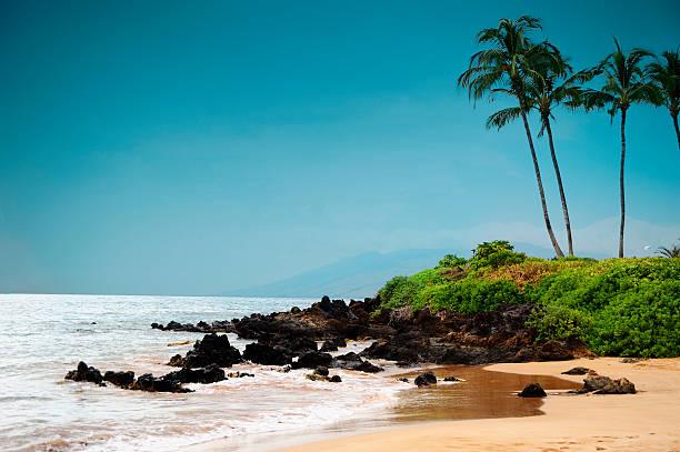 Maui Shore Wall Art