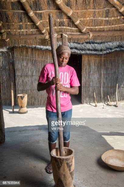 Maun Botswana Africa African Woman using large mortar and pestle in Sexaxa Village
