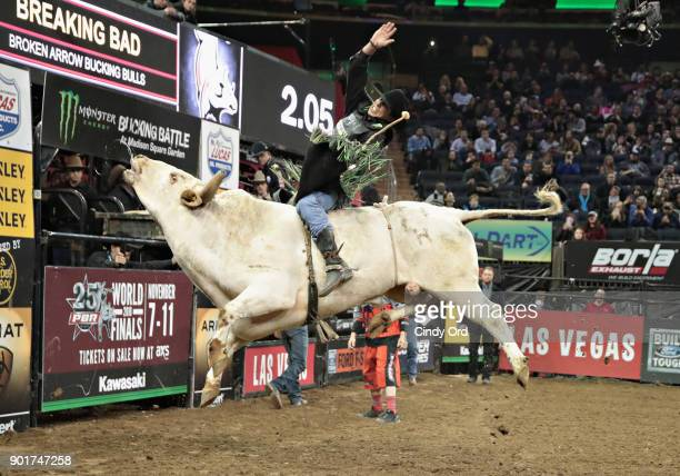 B Mauney rides during the 2018 Professional Bull Riders Monster Energy Buck Off at the Garden at Madison Square Garden on January 5 2018 in New York...